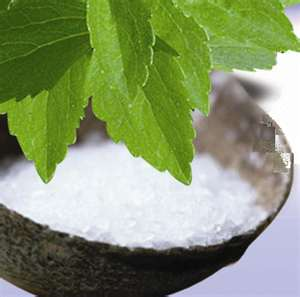 Looking for a Safe Sugar Substitute Like Stevia?  Be Careful What You May Find. (2/6)