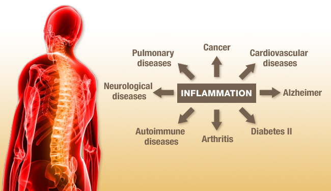 Inflammation, Free Radicals and the Health Benefits of Nuts. (4/6)