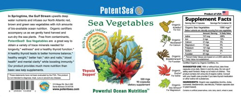 Different Sea vegetables