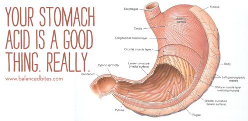 stomachAcid