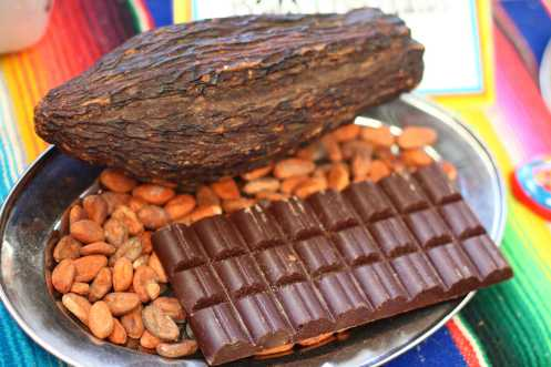 cacao-pod-cocoa-beans-and-chocolate