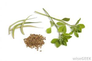 fenugreek-leaves-and-seeds