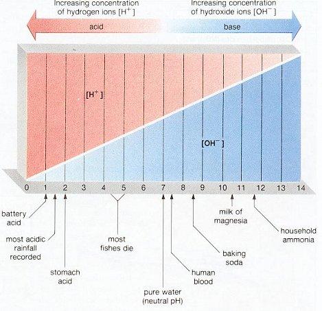 pH-Acid