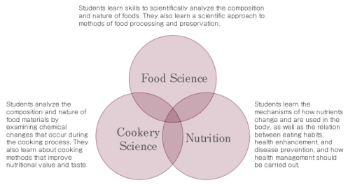 intro_food_science