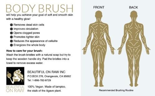 dryskinbrush