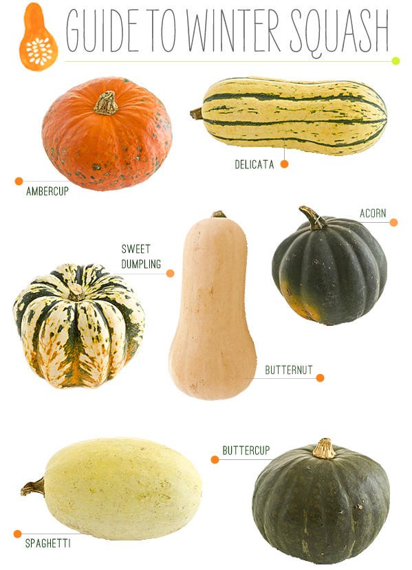 Get Ready for Winter with Winter Squash