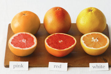 Grapefruits range in diameter and can come with seeds or seedless