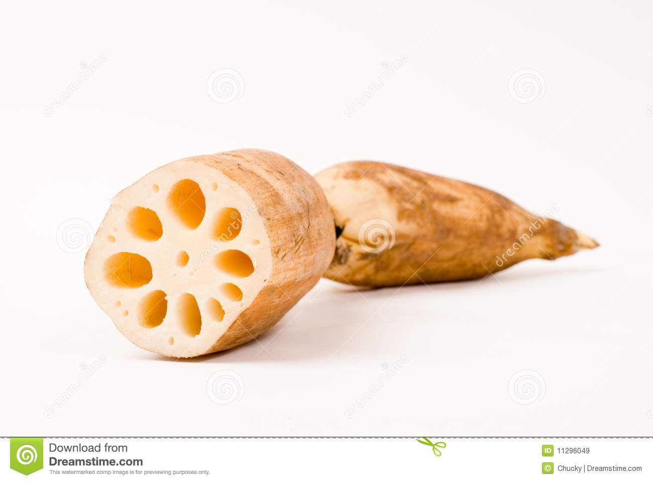 Plant roots the good bad and not so ugly carb find out why fat lotus root the root may be ugly but its flower the water lily is a beautiful art form the flower is the national flower of india and vietnam izmirmasajfo Image collections